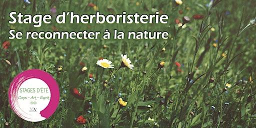 Stage d'Herboristerie : se reconnecter à la Nature - Initiation aux plantes aromatiques et médicinales