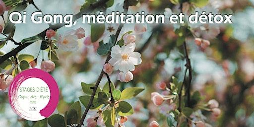 Stage d'été : Qi Gong, méditation et détox