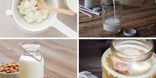 Learn how to make your own dairy and vegan kefir and yoghurt