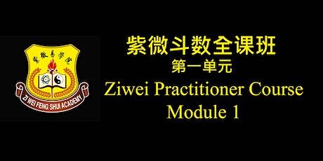 Ziwei Practitioner Course Module 1 紫微斗数全课班 (第一单元)  中文课程 tickets