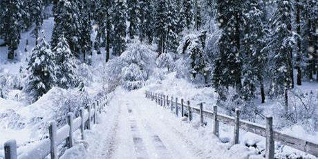 Restore & Reflect: A Winter Mini Retreat tickets