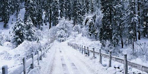Restore & Reflect: A Winter Mini Retreat