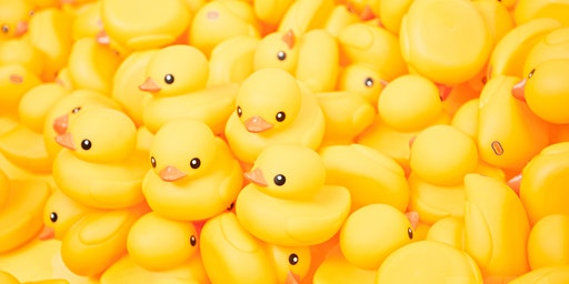 Little Ducklings (bilingual play sessions) - Spring Term 2020