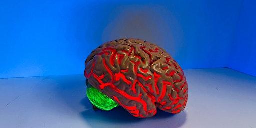 Stroke – hjärninfarkt och hjärnblödning. Stora framsteg drivna av forskning