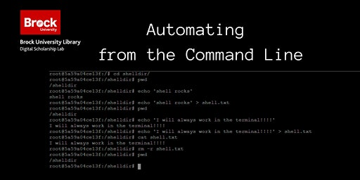 Automating from the Command Line