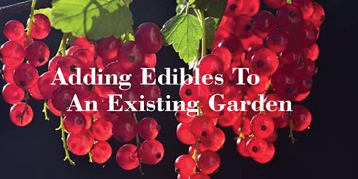 Adding Edibles To An Existing Garden