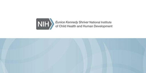 Task Force for Research Specific to Pregnant Women and Lactating Women