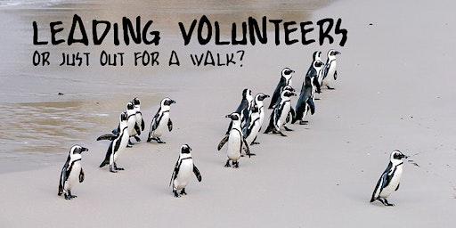 Leading Volunteers