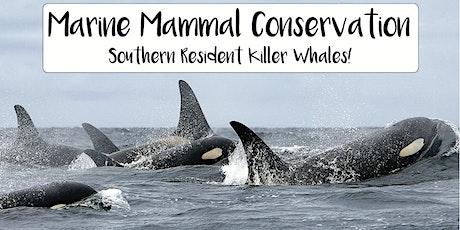 Marine Mammal Conservation - Spotlight on  Southern Resident Killer whales! tickets