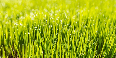 Spring Lawn Care - CH tickets
