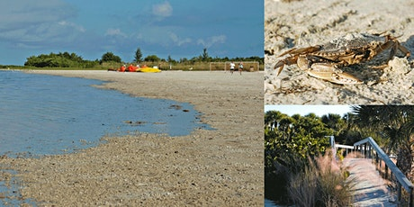 Collier County 4-H Fun at Tiger Tail Beach - Exploring Marine Life! tickets
