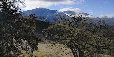 Irish Canyon Audubon Hike tickets