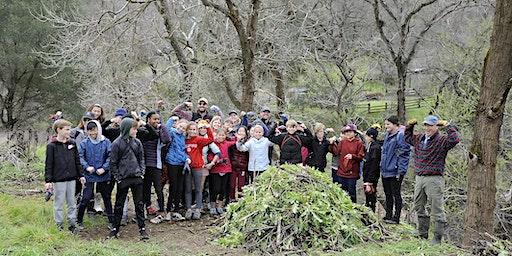 Diablo Restoration Team Workday—Marsh Creek 8
