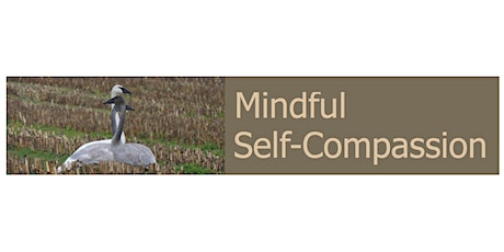 Real Self-Care: Self-Compassion Tools for Burnout & Caregiver Fatigue tickets