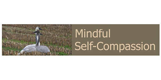 Real Self-Care: Self-Compassion Tools for Burnout & Caregiver Fatigue