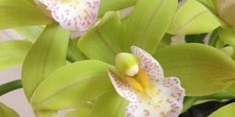 Gully gardeners - Growing Cymbidium Orchids tickets