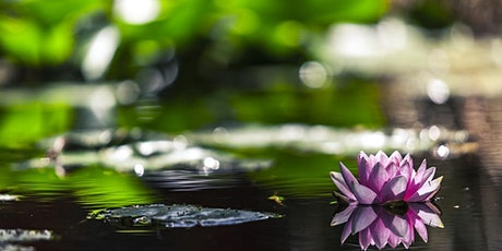 Introduction to Mindfulness (4 week workshop) tickets