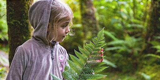 Rotorua hui