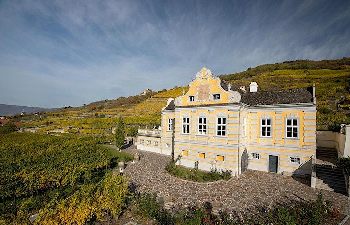 Sound of Wine Domäne Wachau + friends: Bild