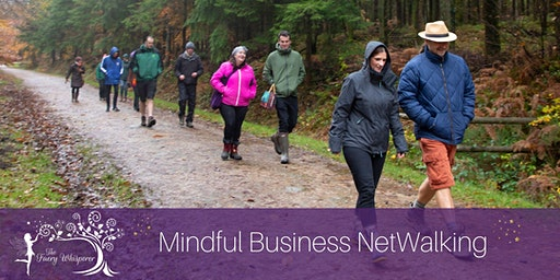 Mindful Netwalking at Cockington Country Park, Torquay
