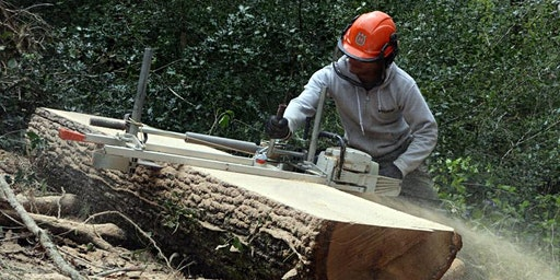 Tree Talks: Crafting with Wood; how to make a livelihood, with Lou Rainbow and Ambrose Vevers