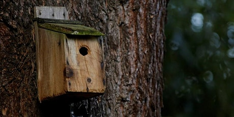 Nest Box Building tickets