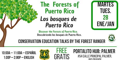 The Forests of Puerto Rico / Los Bosques de Puerto Rico