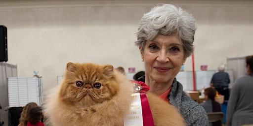 Cat Show -Ormond Beach - 1/18/20 - 1/19/20
