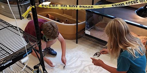 Crime Scene Forensics: Catching a Criminal   Grades 6-8