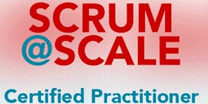 Virtual Certified Scrum@Scale Practitioner - 16 - 17...