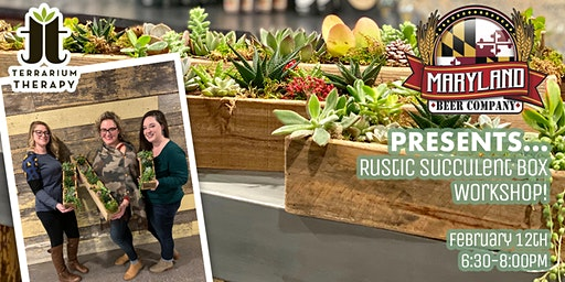 Rustic Succulent Box at Maryland Beer Company
