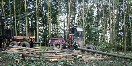 Basic Woodland Management at Hartshill Hayes Country Park tickets
