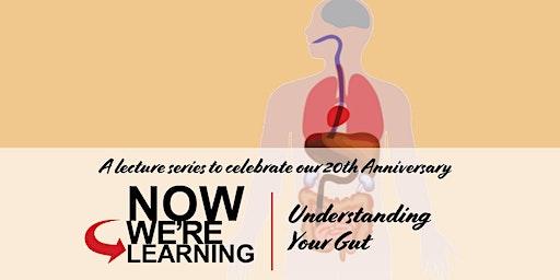 Understanding Your Gut