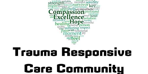 Bristol's Promise: Trauma Informed/Responsive Care Meeting