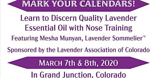 Nose Training, Learn to Discern Quality Lavender Essential Oil