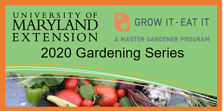 2020 CCMG GIEI Gardening Series: Seed Saving tickets