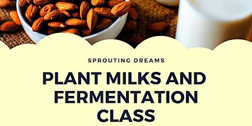 Plant Milks and Fermentation Class