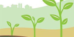 Cultivating Your Farm Future