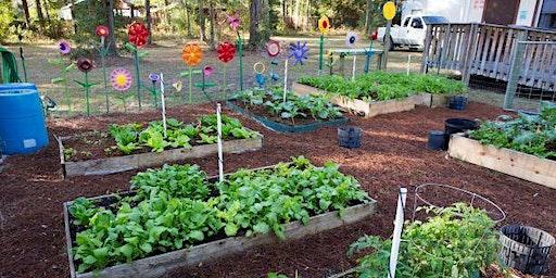 Spring 2020 Jefferson Backyard Gardening Series