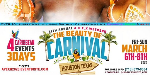 Caribbean Party Weekend in Houston
