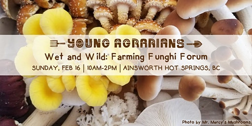 Wet and Wild: Farming Funghi Forum