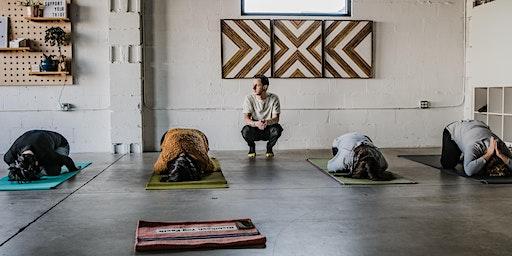 Elevation Yoga: Vin then Yin