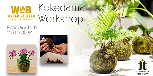Orchid and Jade Kokedama Workshop at World of Beer Exton