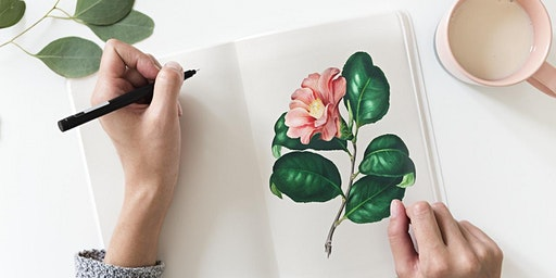 Introduction to Botanical Illustration - Adult Event