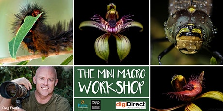 The Mini Macro Workshop (February 2020) tickets
