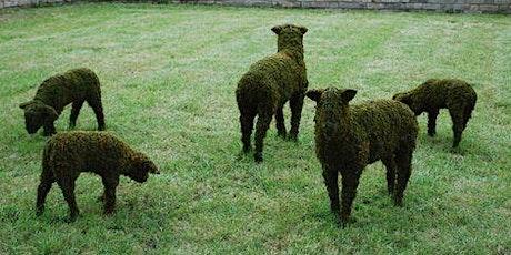 Green Sheep Creation Weekend tickets