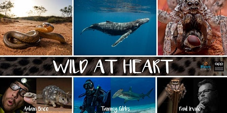 Wild At Heart - Nature and Wildlife Photography tickets