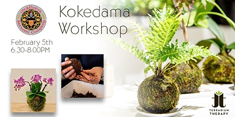 Kokedama Workshop with Orchid and Jade at McAllister Brewing Company tickets