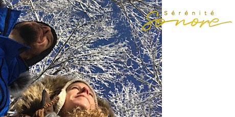Lumière d'hiver - Voyage sonore avec Rafaelle MacKay et Sylvain Lapointe tickets