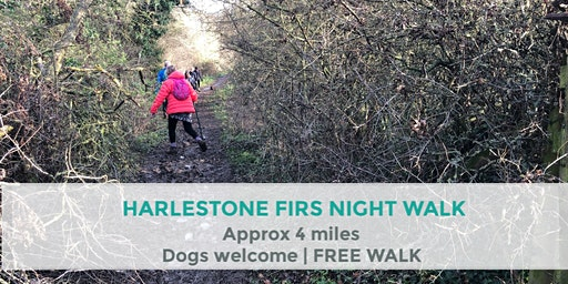 HARLESTONE FIRS FOREST EVENING WALK | APPROX 4 MILES | EASY | NORTHANTS